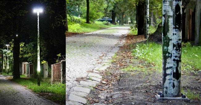 SŁUP ŚWIETLNY ZWZOREM BRZOZA realizacja: park Chorzów