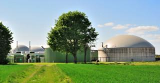 W biogazie czuć ruch
