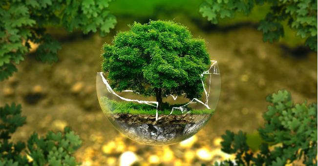 EKOPROJEKTOWANIE: jak przemysł może chronić środowisko