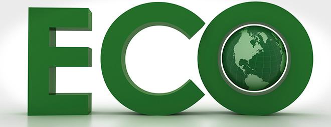 Zielona Marka, naturalna przyszłość światowego. Top 10 produktów