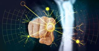 Mamy najwyższą gotowość na wdrożenie technologii sztucznej inteligencji spośród wszystkich krajów Europy Centralnej