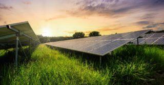KGHM inwestuje w projekty OZE i buduje 3 farmy fotowoltaiczne