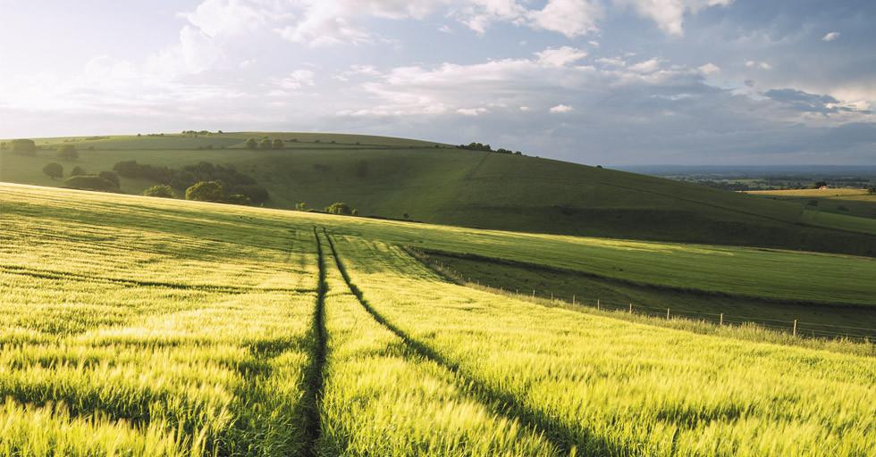Ograniczenia w obrocie nieruchomościami rolnymi – nowe regulacje