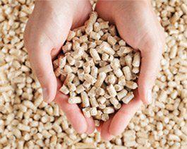Rynek pelletu: Europa zdecydowanym liderem