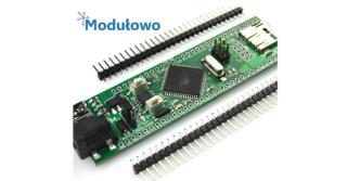 Moduły elektroniczne i zestawy rozwojowe firmy Modułowo w ofercie TME