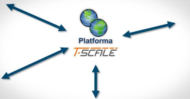 Grupowe zakupy, T-Scale w praktyce