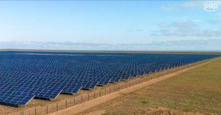 Farma fotowoltaiczna o powierzchni 300 hektarów powstaje na Pomorzu